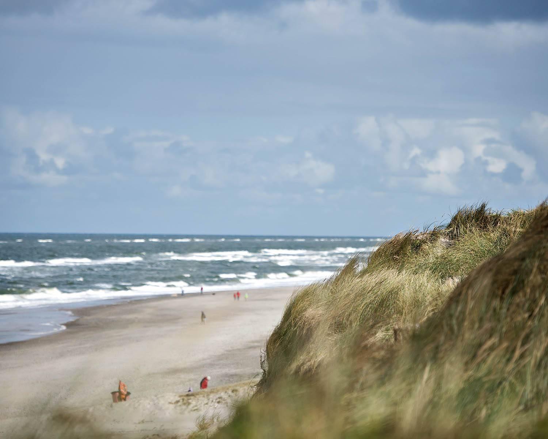 Forskellige De bedste strande i Hvide Sande - Sommerhusferie med Feriepartner VS03